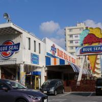 沖縄のブルーシール
