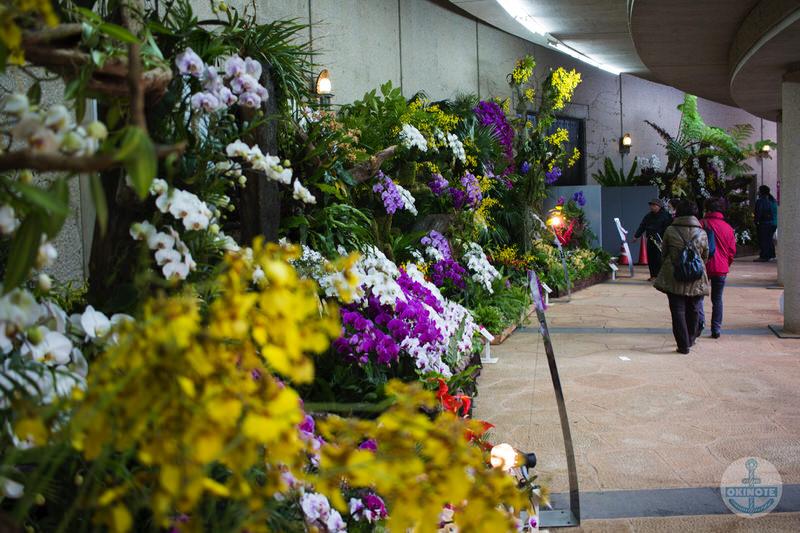 沖縄国際洋蘭博覧会ディスプレイ会場 回廊