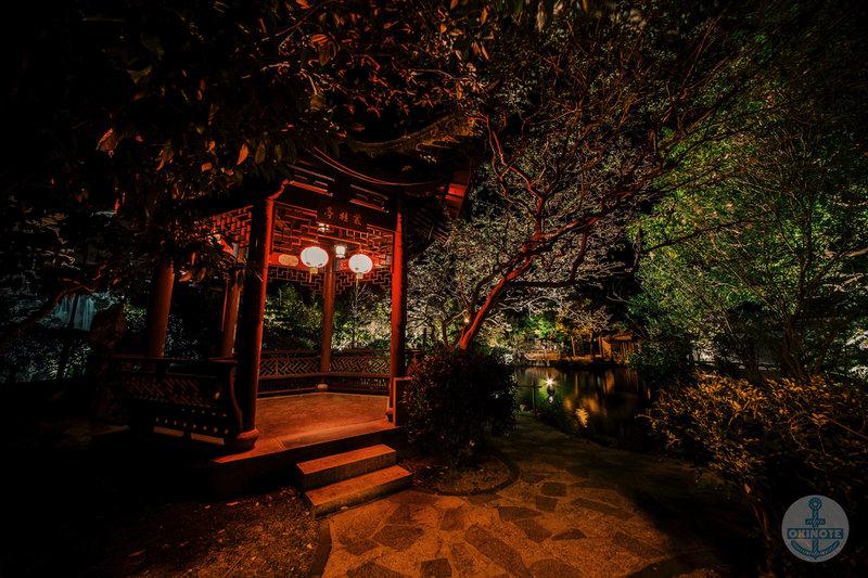 福州園のライトアップ