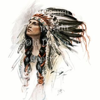 New Harrison Fisher Image in my Etsy Shop ~ Chief Hiawatha
