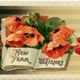 Winsch New Year Poppies Postcard