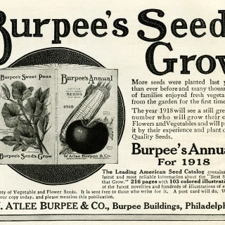 Burpee's Annual Seeds Catalogue Ad