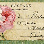 Gorgeous pink rose & French postcard ~ lilac-n-lavenderSM