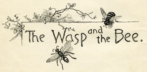 wasp and bee, vintage school lesson title, sketch of insects, old story image