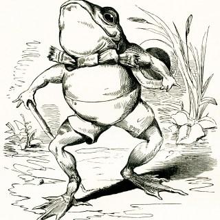 Fairytale Frog Vintage Image