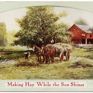 Making Hay While the Sun Shines Postcard