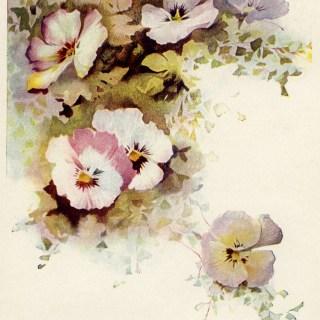 Free Vintage Image ~ Pretty Cluster of Pansies