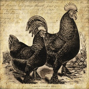 Rooster & hen 5x5 in ~ lilac-n-lavender