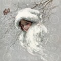 harrison fisher, snowbirds, snow queen, winter image, victorian lady, birds on branch, library cards, digital collage sheet, grungy paper, shabby card