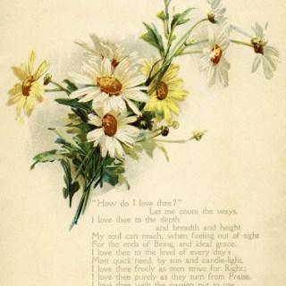 Free Vintage Image ~ Daisies and Love Poem