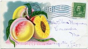 vintage garden, vintage postcard, free digital graphics, vintage fruit illustration, vintage clipart peach