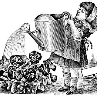 Girl Watering Flowers ~ Free Vintage Clip Art