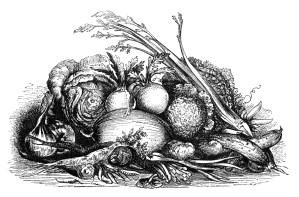 vintage fall harvest clip art, black and white clipart, display of vegetables image, garden veggies illustration, mrs beeton food graphic