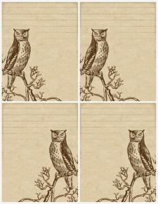 owl stationery, lilac & lavender