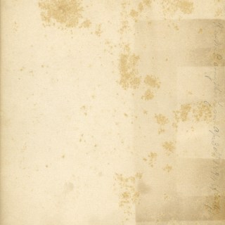 Grungy Aged Endpaper