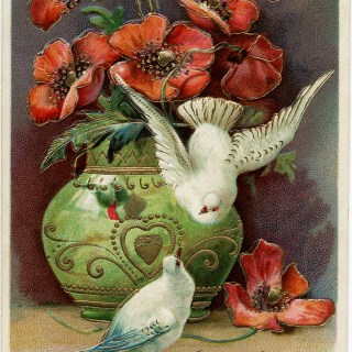 Poppies Birds and Best Wishes ~ Free Vintage Postcard Image