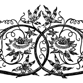 Ornamental Swirl Design ~ Free Vintage Clip Art