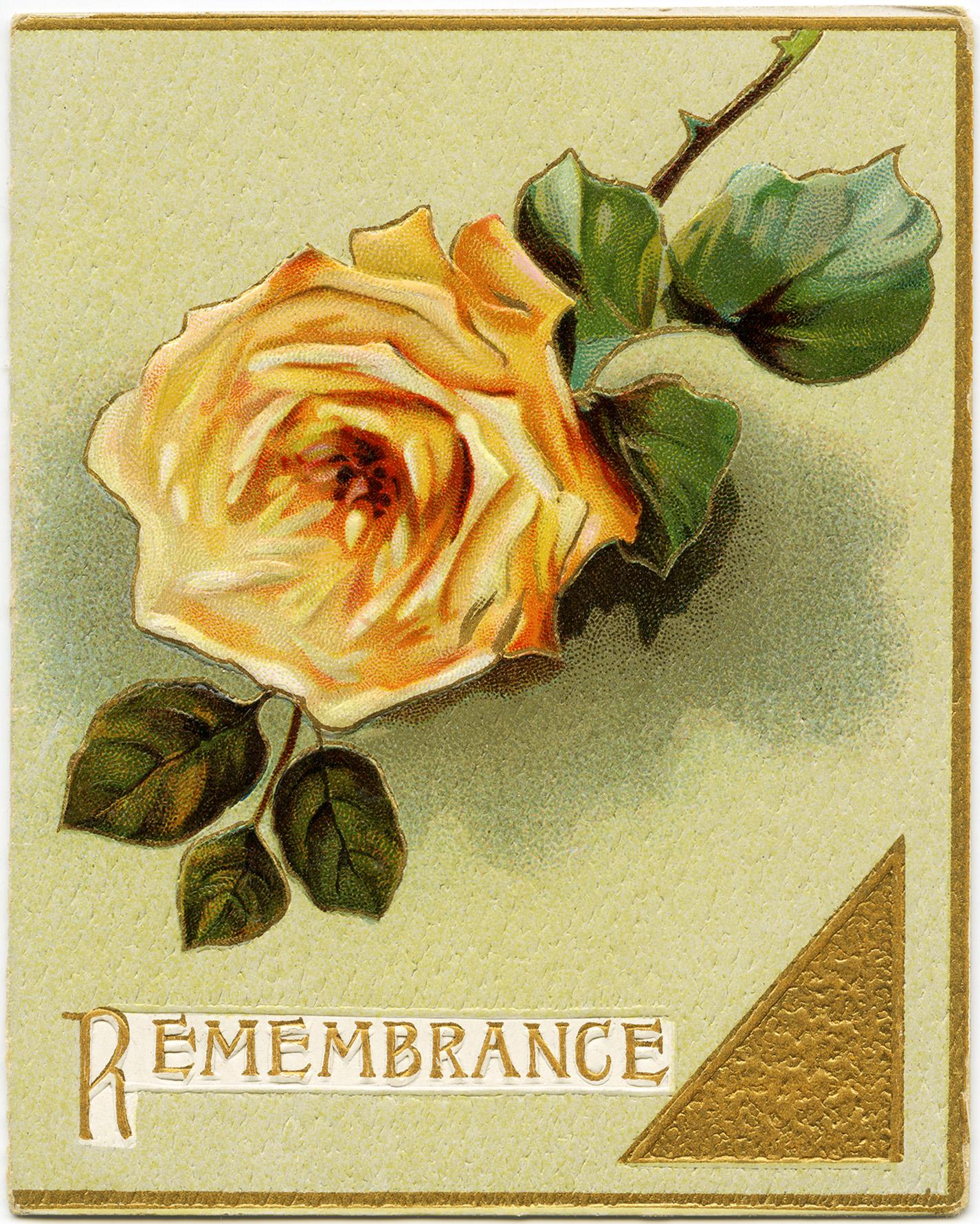 Yellow Rose Christmas Card ~ Free Graphics