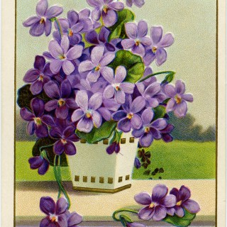 Purple Flowers in Basket ~ Vintage Postcard Image