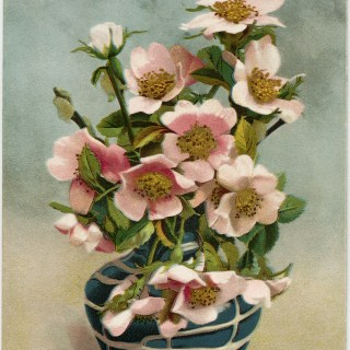 Pink Flowers in Blue Vase ~ Vintage Postcard Image