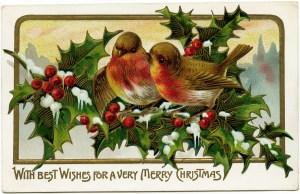 vintage Christmas postcard, bird clip art, bird holly berries illustration old fashioned Christmas card, birds on branch clip art