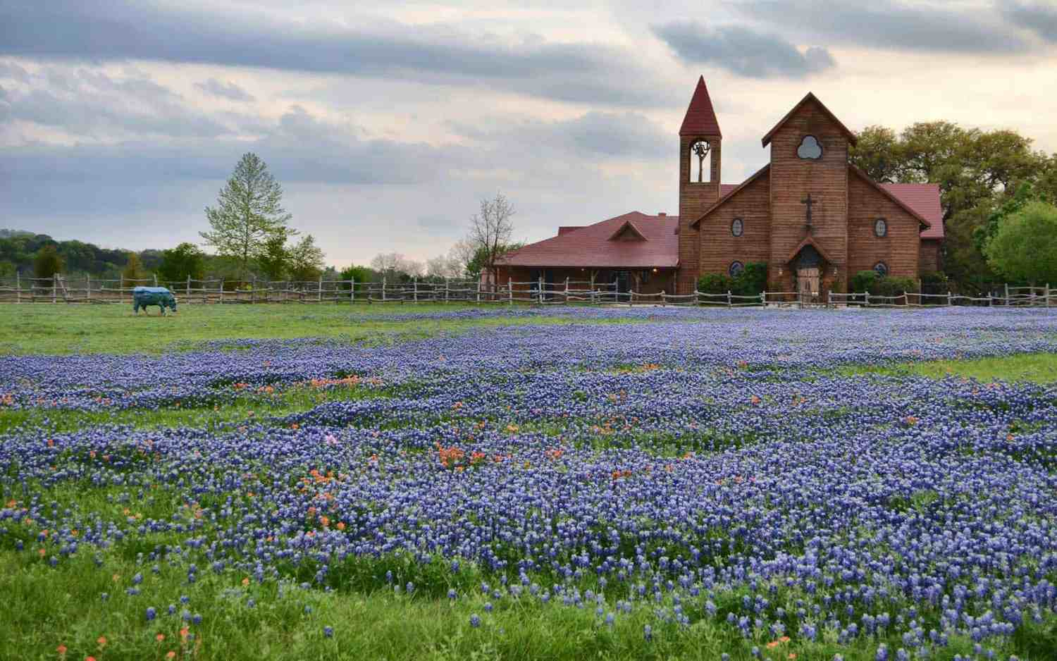 Hill Country Wedding at Old Glory Ranch