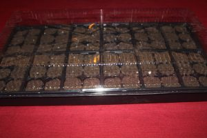 Using the plastic seed domes, or even a piece of saran wrap can keep the humidity level up to help seeds germinate