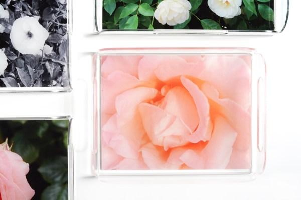 garden rose acrylic trays