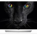 Der LG 65EF9509 – OLED TV mit satten 4K