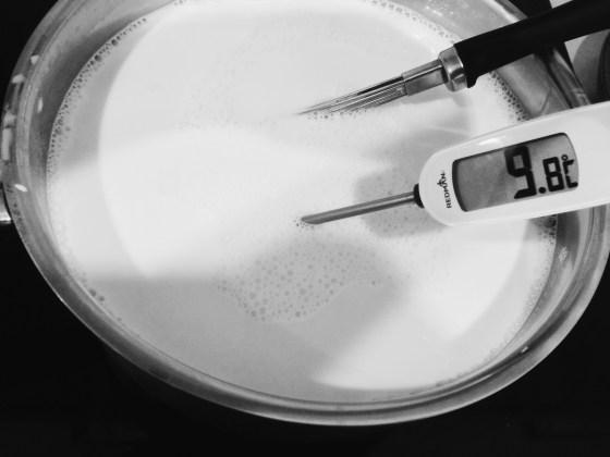Yogurt with thermometer