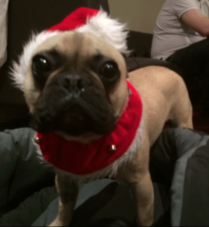 Merry Max - Maximum Santa