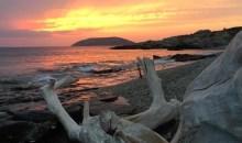 Μια παραλία της Αττικής που τα προσφέρει όλα! Αλήθεια, εσείς γνωρίζετε να κωπηλατείτε;