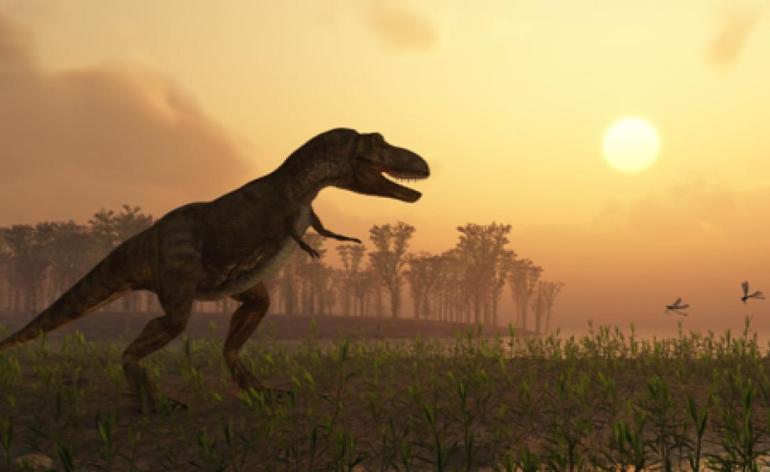 qa_dinosaurroam2