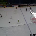 The Dubai Mall has an ice rink!