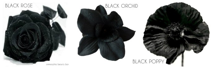 Lierac Premium Black Rose, Orchid & Poppy triptych