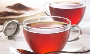 rooibos-tea-anti-age