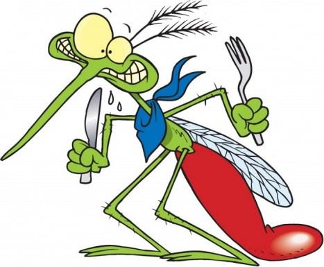 mosquito_0_1