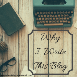 Why I Write This Blog