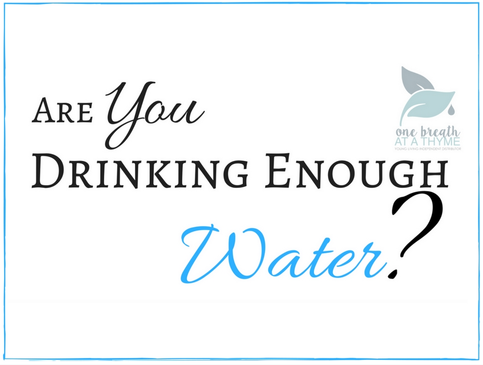 Are You Drinking Enough Water Featured Image