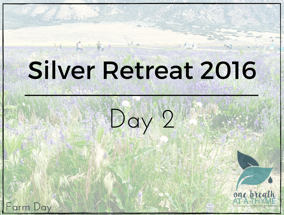 silver-retreat-day-2-farm-day-featured-image
