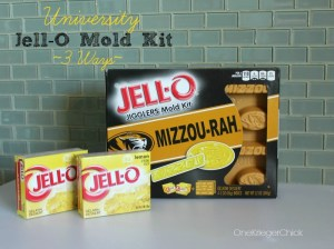 GO-MU! JellO Mold Kit OneKriegerChick.com #TeamJellO #shop