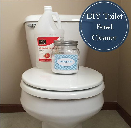 toiletbowlcleaner-e1430236211576