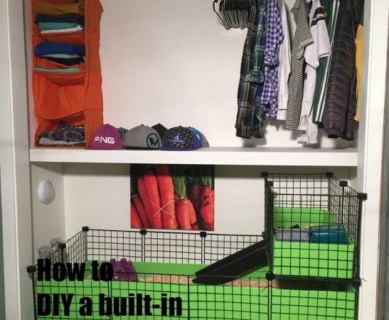 Closet Makeover ~ Built-In Guinea Pig Cage