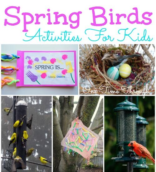 Spring Birds Activities for Kids