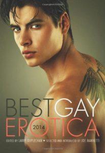 best gay erotica