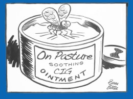 on-pasture-soothing-ointment