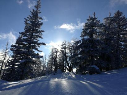 Sunlight on snow in mountains