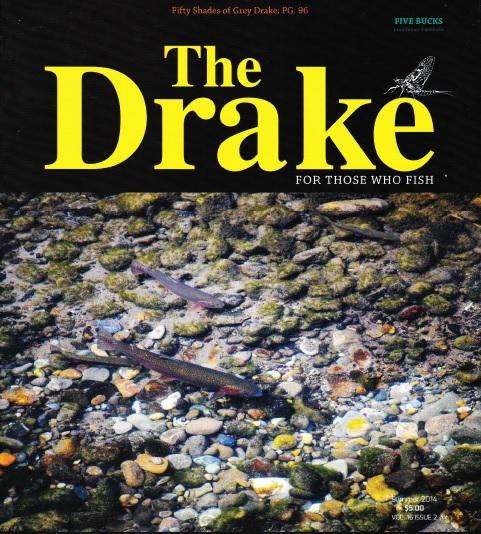 Drake cover photo