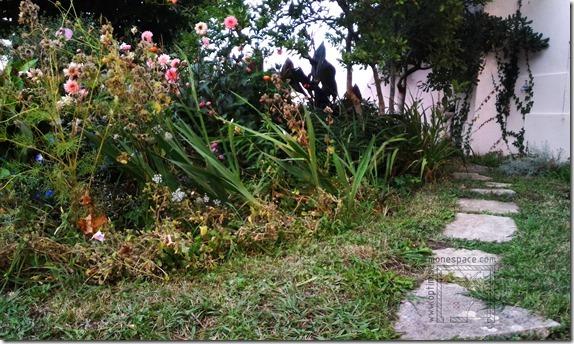 Comment agrandir un jardin : allée petit jardin