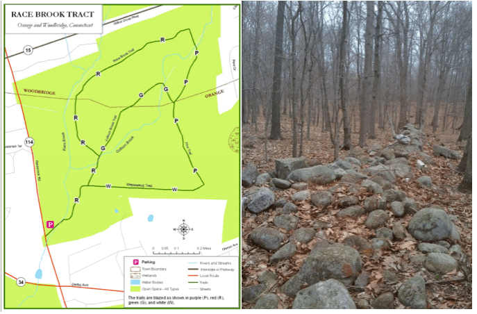 Orange Lions Help Improve Local Hiking Trails